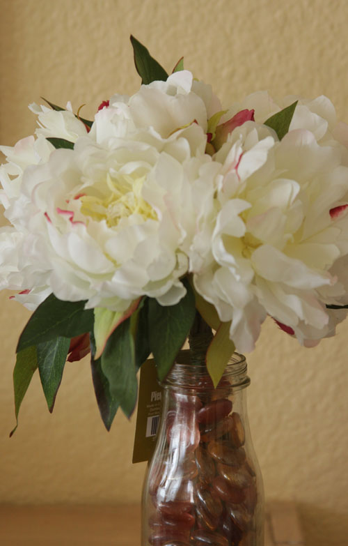 Peony for web-2